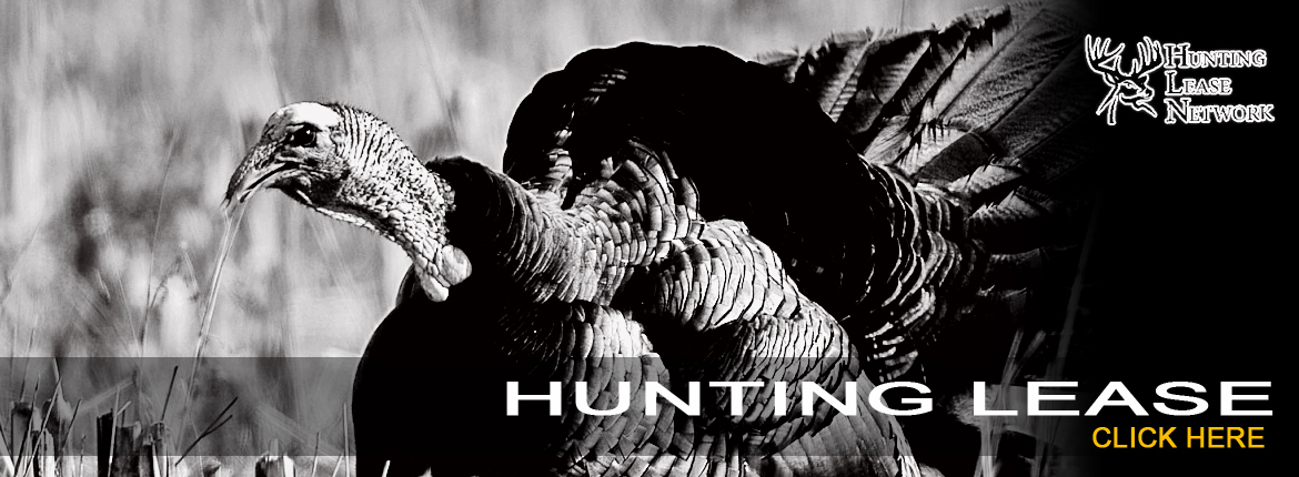 Hunting Lease 1170x430 copy